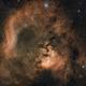 NGC 7822,                                photoman888