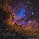 SH2-142 (NGC 7380) - The Wizard,                                Richard Bratt