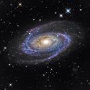M81 - LHaRGB,                                Pascal Gouraud