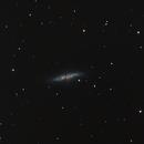 M82 - mit Supernova,                                Avelon
