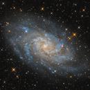 M33 - The Triangulum Galaxy,                                Michael Kalika