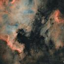 NGC 7000, IC 5070 & IC 5067,                                Brad