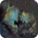 North America Nebula and Pelican Nebula Bortle 8,                                Carastro