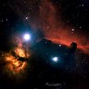 Horsehead & Flame Nebula,                                Lily Y