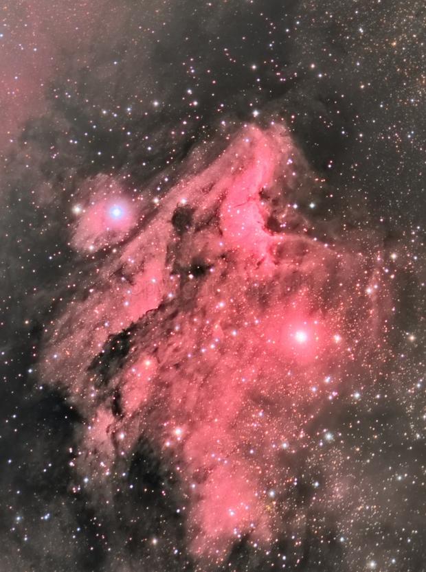Pelican Nebula, IC 5070,                                Paul May