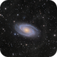Messier 81 and Arp's Loop,                                Barry Wilson