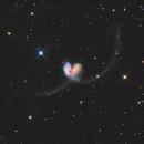 NGC 4038/39 The Antennae Galaxies - LRGB,                                Zheng Fu
