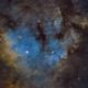 NGC 7822,                                Jens Zippel