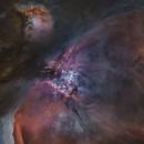 Il cuore di M42,                                Alessandro Speranza