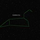 Constellation of Leo with Jupiter Near By,                                David C. Brown