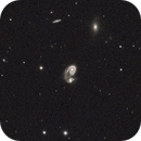 ngc5278 the little snail,                                Alessandro Bianconi