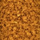 First Ha Solar Image,                                Dan Goelling