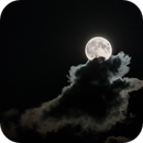 Harvest Moon,                                Alessandro Merga