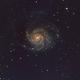 M101,                                Tom Swulius