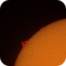 Sun 19_11_2020,                                Maciej