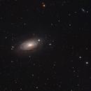 Sunflower Galaxy (M63),                                Willem Jan Drijfhout