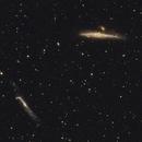 NGC4631, Whale galaxy,                                Ou Mingzhi