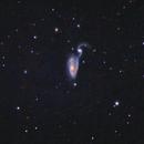 Heron Galaxy,                                Rick Veregin