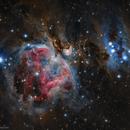 M42,                                Gianluca Galloni