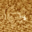 Solar chromosphere 20161030,                                Sergio Alessandrelli
