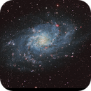 Messier 33 Triangulum Galaxy,                                Tim Trentadue