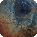 Animals in the Rosette (NGC 2244),                                jlangston_astro