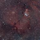 NGC 2264 Cone Nebula & Christmas Tree Cluster,                                Christophe Perroud