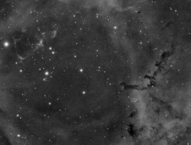 The Rosette Nebula - jaguar,                                Michal Rak