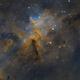 Melotte 15 (Heart of Heart Nebula),                                Bill Long