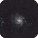 M101   image from New Mexico Skies,                                Harrington Beach Imagers Group