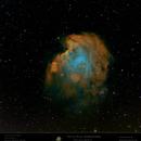 NGC 2175 - Sh2-252 - Monkey Head Nebula,                                Uwe Deutermann