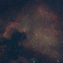 The North American Nebula (with stars),                                Sagarinku
