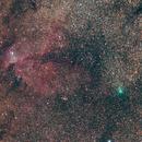 Comet Pansstars 2013 X1 - Next to the Dragon,                                Rodrigo Andolfato