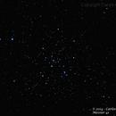Messier 41,                                Carlos A. Archila