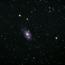 NGC2403,                                Matthew Terrell