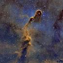 IC 1396 - The Elephant Trunk Nebula,                                Gary Opitz