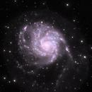 M101,                                philhilo