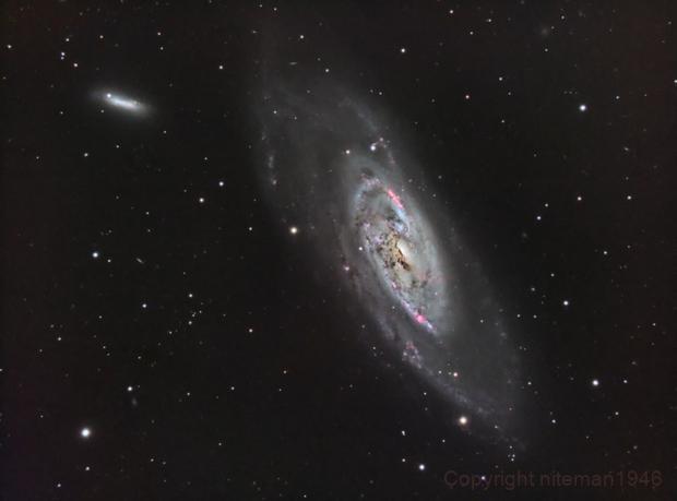 M106 Spiral Galaxy,                                niteman1946
