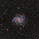 NGC 6946 Fireworks Galaxy,                                JohnAdastra