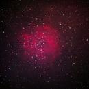 NGC 2244_Rosette,                                Silkanni Forrer