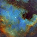 NGC 7000 (NA Nebula),                                Patrick Scully