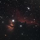The Horsehead Nebula,                                Walter Torres