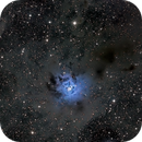NGC 7023 Iris-Nebel,                                Michael Schmid