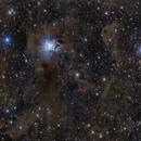 The Iris Nebula (NGC7023),                                KanKan