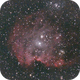The Monkey Head Nebula (NGC 2174),                                Jim Tallman
