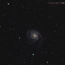 M101,                                Massimo Micieli