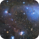 IC 447 (= IC 2169), IC 2167, NGC 2245 and NGC 2247,                                Rainer Raupach