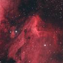 The Pelican Nebula,                                AstroStace