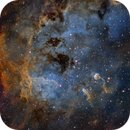 The Cosmic Tadpoles of IC410,                                John Hayes