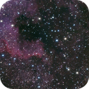 North American Nebula,                                Michael Finan